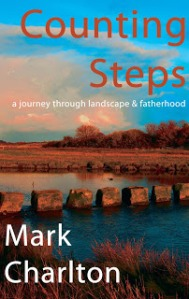 counting steps front cover