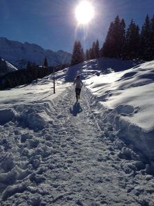 Swiss Altitude Training