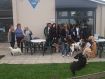 October: Debbie Ferreira-Morgan went on a sponsored walk to raise funds for Owain's assistance dog