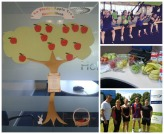 Rowan House Health Week Pledge tree and activities